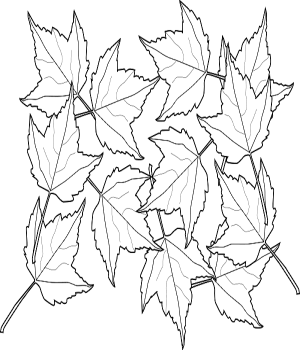 Autumn Leaves Coloring Pages To Print