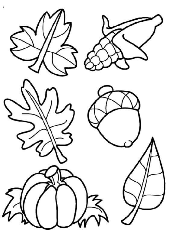Autumn Leaves Coloring Pictures To Print