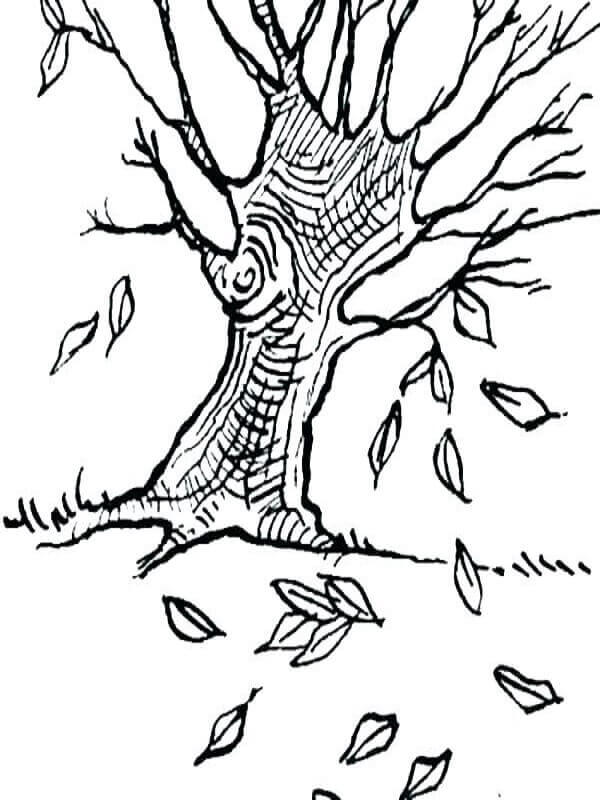 Fall Leaves Coloring Pages To Print
