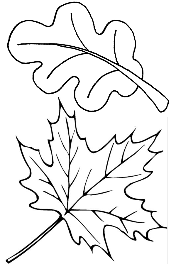 Fall Leaves Coloring Pictures To Print