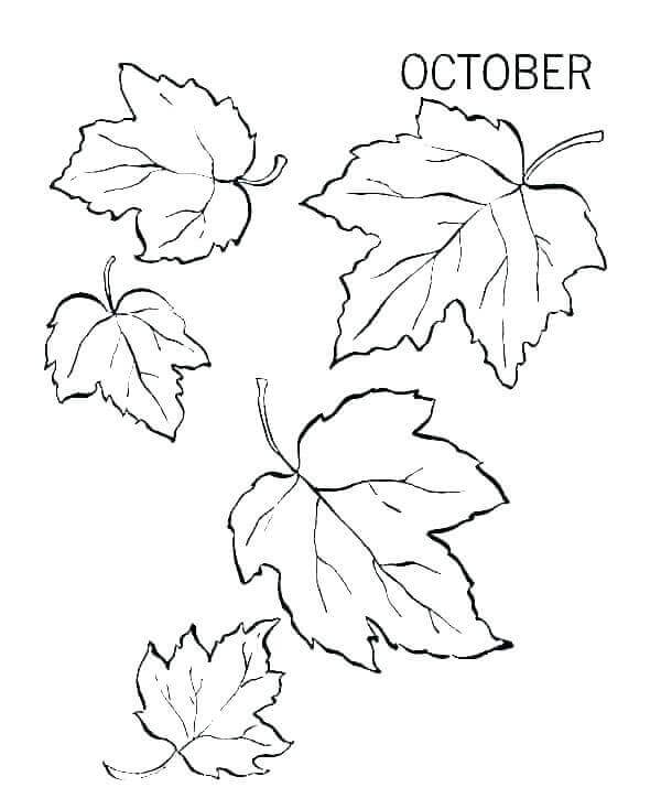 Fall Leaves October Coloring Pages