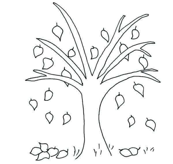 Leaf Coloring Pages For Preschoolers