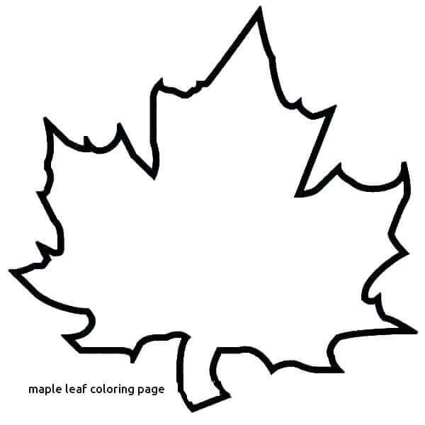 Maple Leaf Coloring Pages